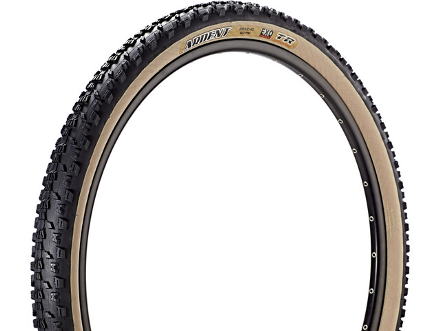 Maxxis Ardent Skinwall Vouwband TR EXO